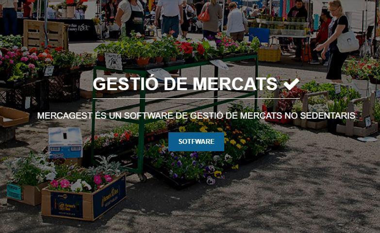 Disseny i programació d'una intranet per Mercagest