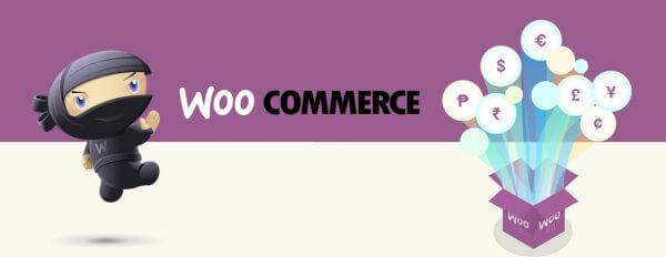 Javajan. WooCommerce, el sistema més benjamí per crear botigues on-line