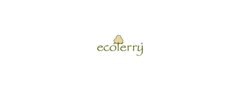 Creació d'una botiga online per Ecoterry