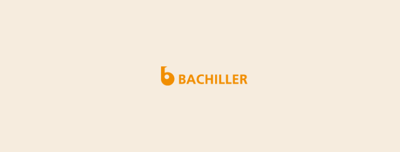 Creació d'una pàgina web per Bachiller