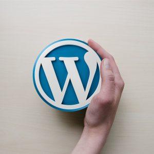Novetats que ofereix el nou WordPress 5.2