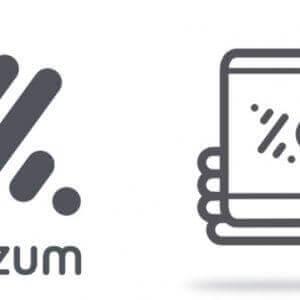 Bizum ecommerce i els seus avantatges