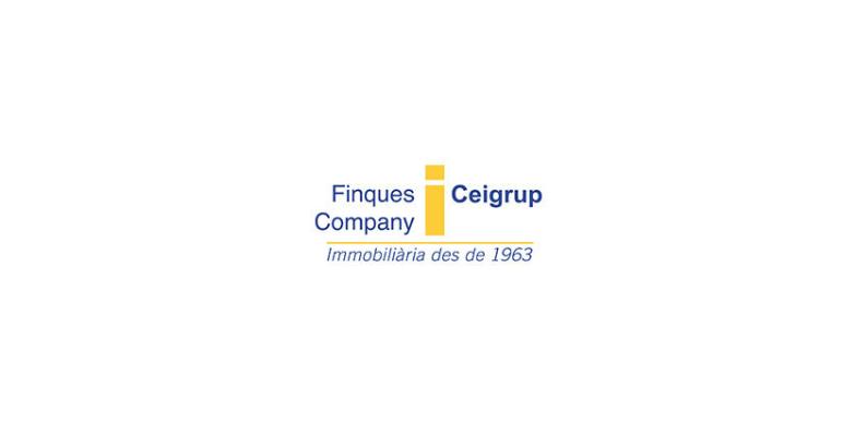 Pàgina web per Finques Company