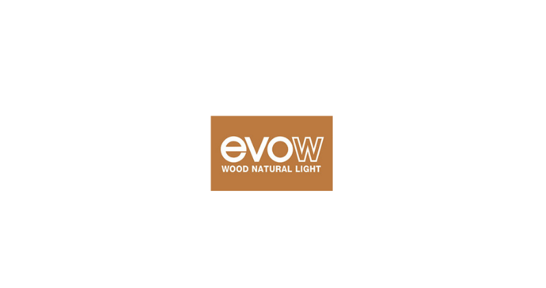 Pàgina web per Evolution Windows – Evow
